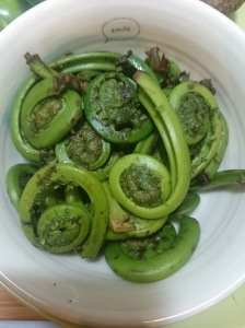 Fresh Fiddleheads - Candy Coated Culinista
